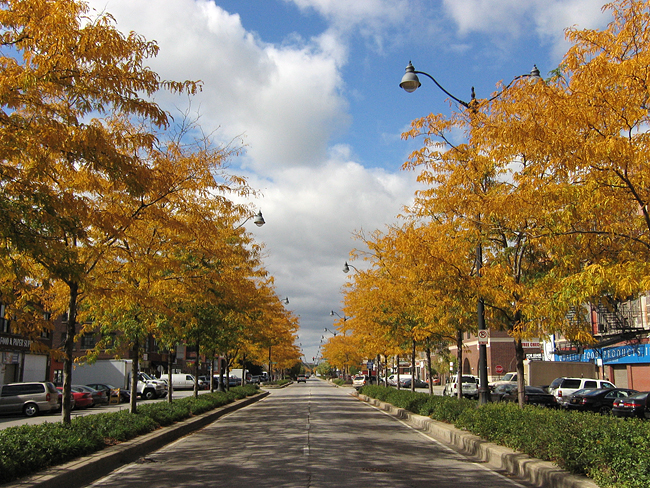 Fall comes to Chicago
