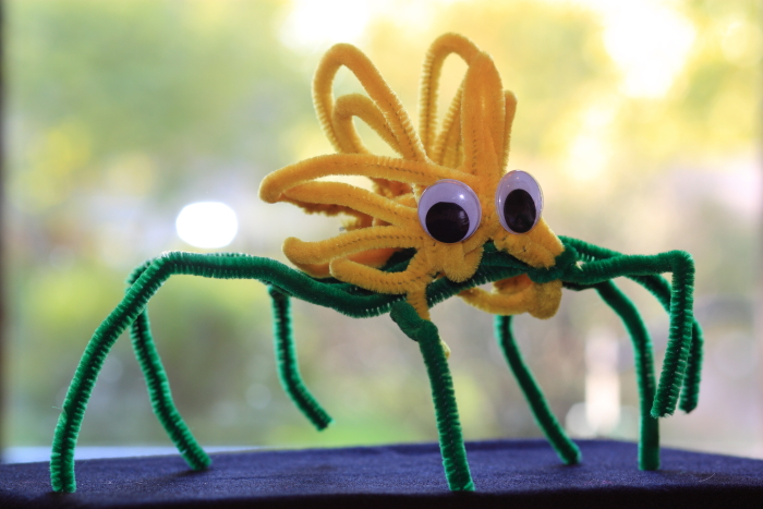Nate made a spider out of pipe cleaners and googly eyes.