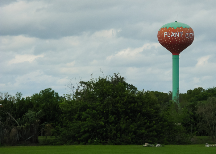 Plant City Florida has a watertower painted like a strawberry