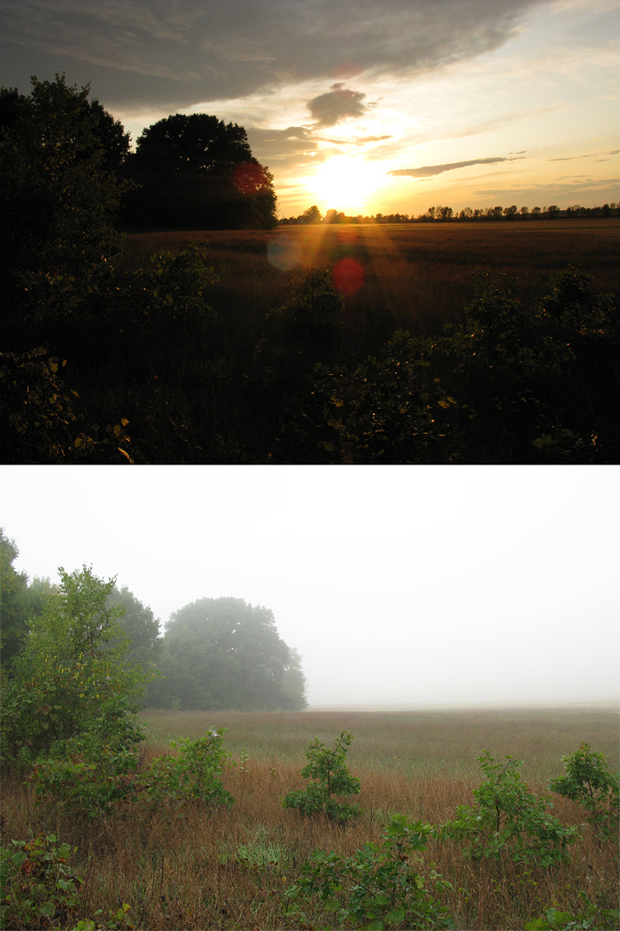 evening and morning