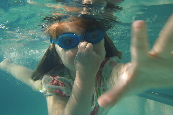 Lily swimming underwater in a pool in Galena